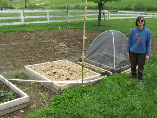 Square foot beds next to row garden