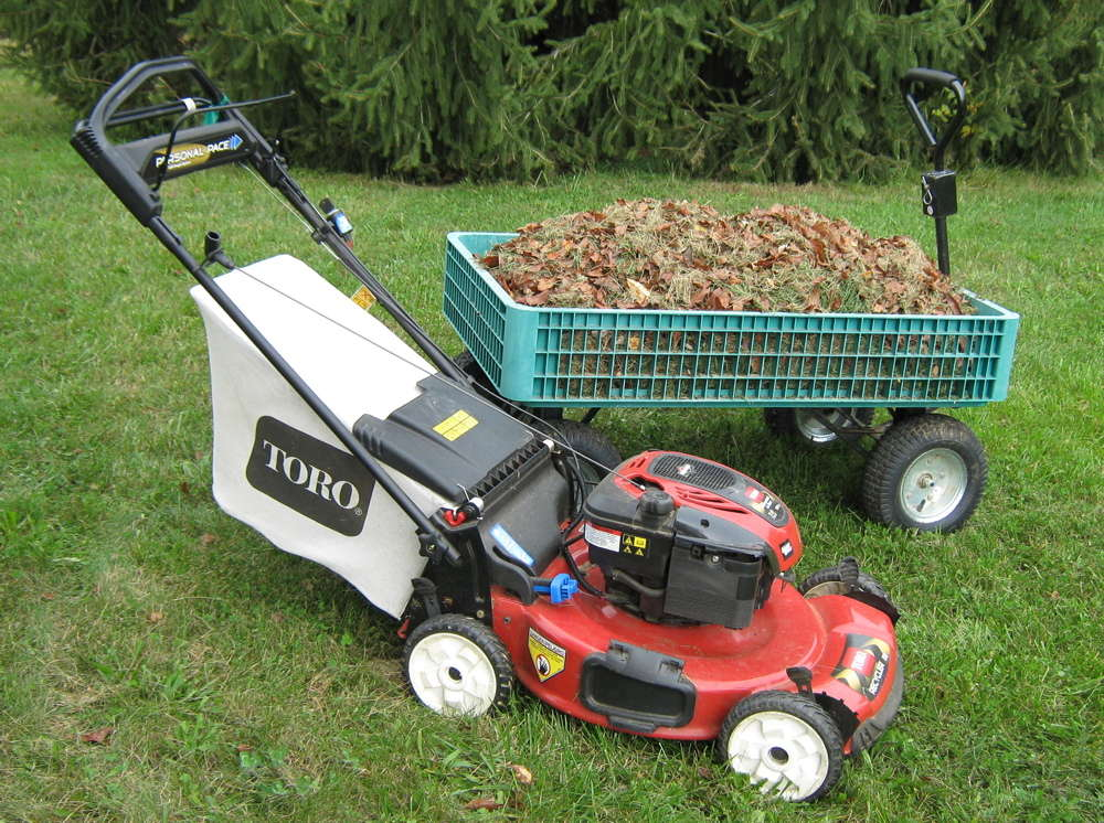 Lawn mower and mulch