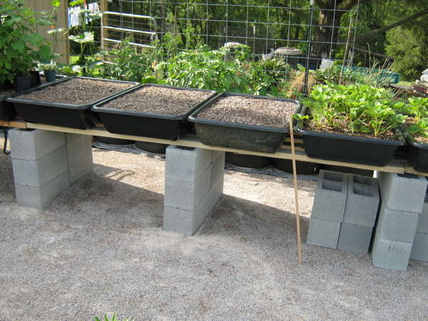 Waist-high planting containers