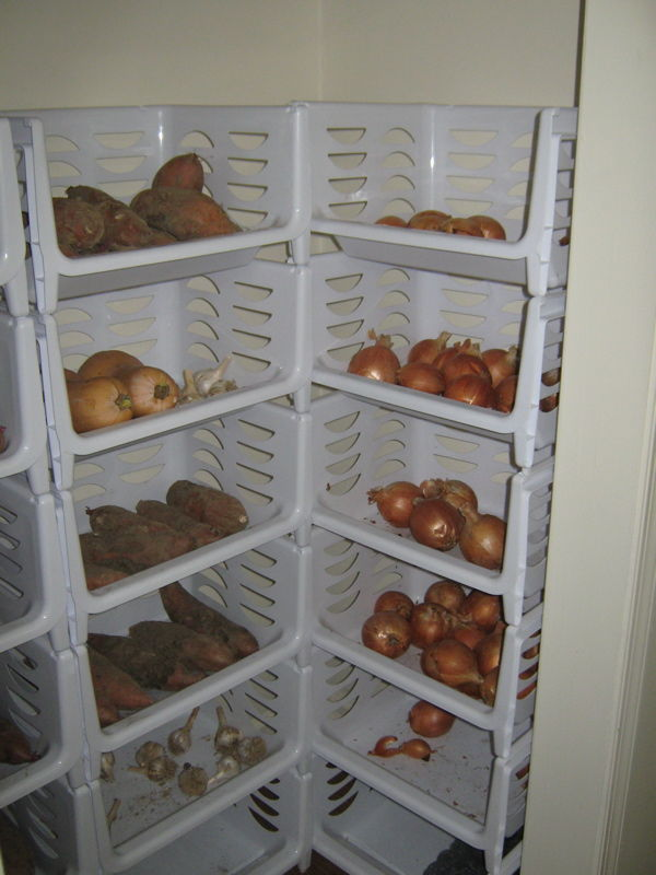 Vegetables kept in stackable storage units