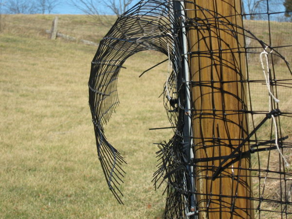 Floppy fence used on gate of deer fence