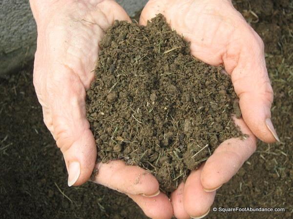 compost-enriched soil