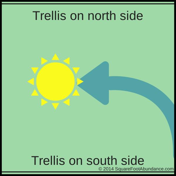 Doulge Trellis Layout