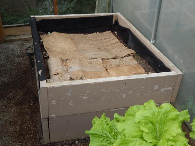 Simple wood worm bin