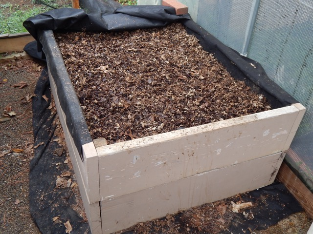 A worm bin full of fresh bedding